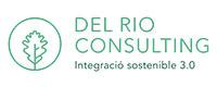 Del Rio Consulting